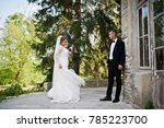 romantic lovely newly married... | Shutterstock . vector #785223700
