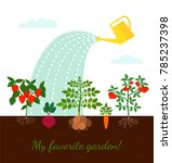 garden beds with root... | Shutterstock .eps vector #785237398