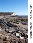 cuckmere haven  sussex beach ...   Shutterstock . vector #785259784