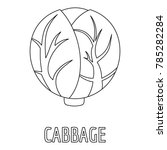 cabbage icon. outline... | Shutterstock .eps vector #785282284