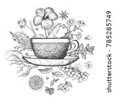 herbal tea vector illustration. ... | Shutterstock .eps vector #785285749