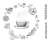 herbal tea vector illustration. ... | Shutterstock .eps vector #785305540