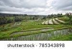bali landscape  bali scenery ... | Shutterstock . vector #785343898