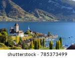 view of lake thun in... | Shutterstock . vector #785373499
