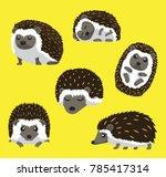 hedgehog six poses cute cartoon ... | Shutterstock .eps vector #785417314