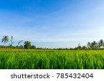 blue sky and cloud with meadow...   Shutterstock . vector #785432404