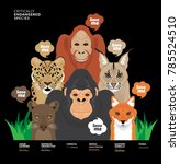 save me campaign  save animals...