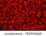 Natural Red Roses Background ...