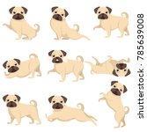 set of dogs  a set of beautiful ... | Shutterstock .eps vector #785639008