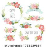 wedding flowers vector... | Shutterstock .eps vector #785639854