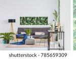 blue blanket and pink pillows... | Shutterstock . vector #785659309