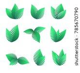 growing green leaf symbols  ... | Shutterstock . vector #785670790