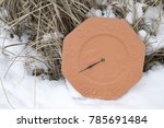 outdoor thermometer sitting in...   Shutterstock . vector #785691484