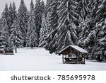 Vacant Snow Covered Wooden...
