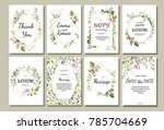 botanic card with wild flowers ... | Shutterstock .eps vector #785704669