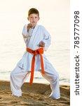 little boy doing karate poses... | Shutterstock . vector #785777098