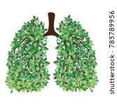 Human Lungs. Respiratory Syste...
