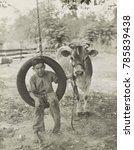 Small photo of Farm boy in a tire swing holds a bridled Guernsey cow on a tether, c. 1925-30. Farm children often made pets of cows, and 4-H club members made projects of raising calves to mature cows
