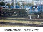 rail transportation of... | Shutterstock . vector #785919799