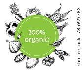 vector hand drawn farm market... | Shutterstock .eps vector #785929783