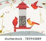 cute red northern cardinal bird ... | Shutterstock .eps vector #785943889