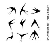 silhouette swallows. template... | Shutterstock .eps vector #785955694
