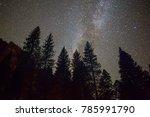 Milky Way Hanging Over Pine...