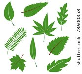 a set of green leaves to the... | Shutterstock .eps vector #78600358