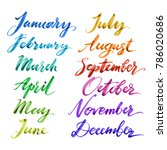 months of the year by hand.... | Shutterstock .eps vector #786020686