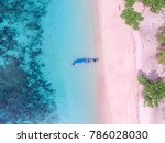 pink beach indonesia | Shutterstock . vector #786028030