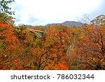 autumn season leaf in naruko... | Shutterstock . vector #786032344