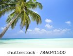 coconut palm tree with bounty... | Shutterstock . vector #786041500