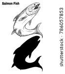 salmon art highly detailed in... | Shutterstock .eps vector #786057853