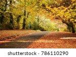mount wilson  blue mountain ... | Shutterstock . vector #786110290