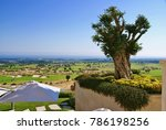 beautiful view on the golf... | Shutterstock . vector #786198256