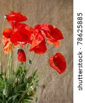 Poppies In The Vase Against...