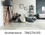 grey roomy apartment with king... | Shutterstock . vector #786276193