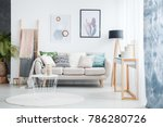 paintings of cactus and... | Shutterstock . vector #786280726