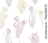 saffron crocus flower graphic... | Shutterstock .eps vector #786288670