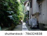 cats behind the alley | Shutterstock . vector #786324838