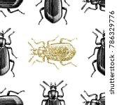 gold darkling beetle background.... | Shutterstock .eps vector #786329776