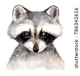 Cute Baby Raccoon. Watercolor...