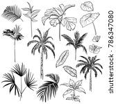 set of  vector  beautiful hand... | Shutterstock .eps vector #786347080