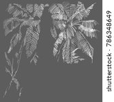 monochrome drawing of tropical... | Shutterstock .eps vector #786348649