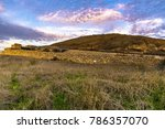 tel lachish  archaeological... | Shutterstock . vector #786357070