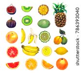 collection of exotic fruits | Shutterstock . vector #786393040