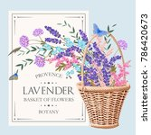 beautiful lavender in basket | Shutterstock .eps vector #786420673