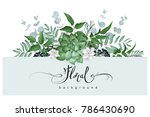 floral background with succulent | Shutterstock .eps vector #786430690
