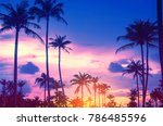 copy space of silhouette... | Shutterstock . vector #786485596