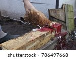 process of cutting off chickens ... | Shutterstock . vector #786497668